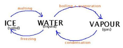 Rainwater Harvesting and its Importance Essay PDF